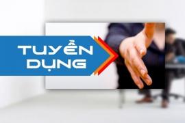 Thăng Long tuyển dụng nhân viên kinh doanh